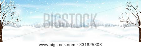 Christmas Scene With Snowdrifts,blizzard,firs And Pine Tree Forest, Winter Landscape Of Birds Family