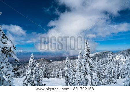 Santa Fe Mountain Winter Landscape. Snow Covered Winter Wonderland , Tall Trees Covered With Deep Po