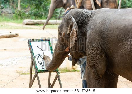 Lampang, Thailand - Oct 13, 2019:-elephant Painting In Picture Elephant, At The Thai Elephant Conser