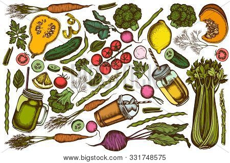 Vector Set Of Hand Drawn Colored Lemons, Broccoli, Radish, Green Beans, Cherry Tomatoes, Beet, Green
