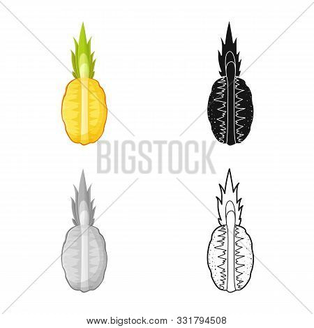 Isolated Object Of Ananas And Sliced Symbol. Web Element Of Ananas And Vitamin Vector Icon For Stock