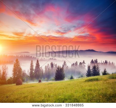 Tranquil morning moment in alpine valley. Location place of Carpathian mountains, Ukraine, Europe. Image of splendid scenery, nature wallpapers. Fantastic sunset scene. Discover the beauty of earth.