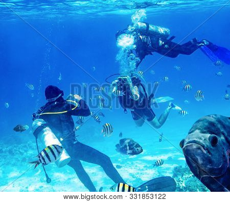 diver swimming underwater near tropical fishes and takes a picture with camera