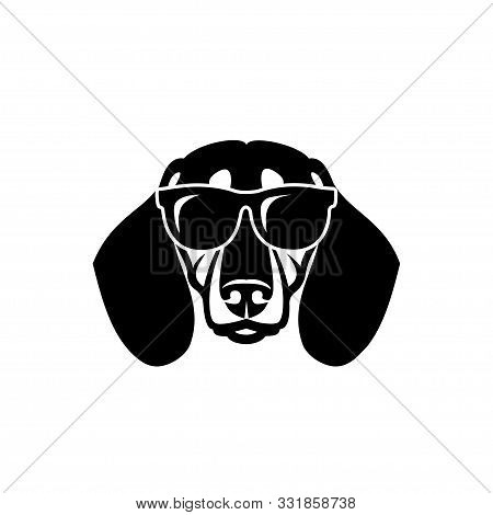 Dachshund Dog Wearing Sunglasses - Isolated Vector Illustration