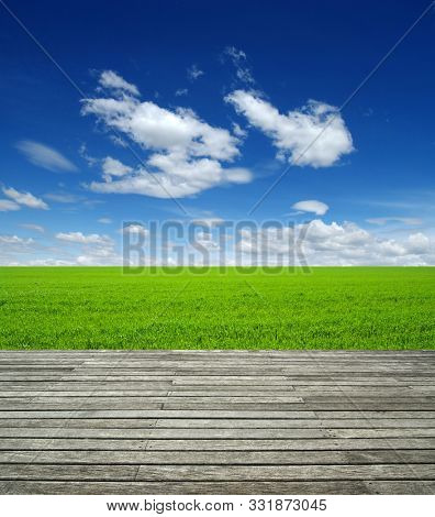 Wood texture and field of green grass