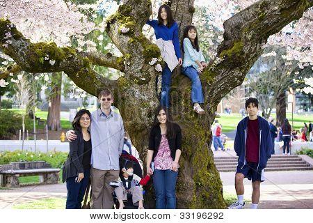 Familia de siete por el gran árbol de cerezo en plena floración