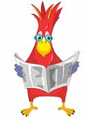 Cartoon Character Funny Parrot Isolated on White Background. News. Vector EPS 10. poster