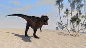 tyrannosaurus on shore poster