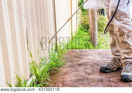 A Man Spraying Weed Killer Herbicide To Control Unwanted Plants And Grass On A Backyard. House Build