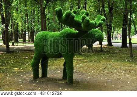 Topiary. Urban Sculpture. Elk With Large Antlers. City Park. 02 August 2021, Smolensk, Russia.
