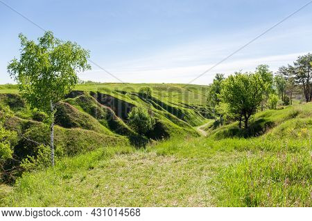 Deep Branched Ravine With Steep Clay Slopes Overgrown With Grass And Single Trees Against The Sky In