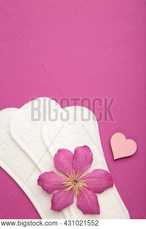 White Sanitary Pad, Hygiene Protection On A Purple Background. Gynecological Menstrual Cycle. A Rose