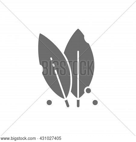 Bay Leaf, Herb Grey Icon. Isolated On White Background