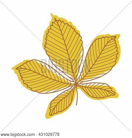 Orange Chestnut Autumn Leaf With Veins As Seasonal Foliage On Stem Vector Illustration