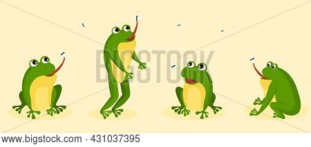 Set Of Hungry Frogs. Funny Toad Jumps, Hunts For Fly, And Catches Insects With His Tongue. Amphibian