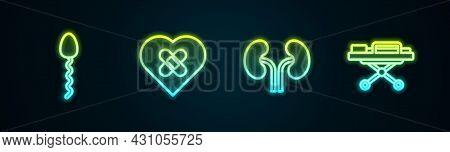 Set Line Sperm, Healed Broken Heart, Human Kidneys And Stretcher. Glowing Neon Icon. Vector