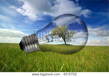 Landscape With Recycled Light Bulb