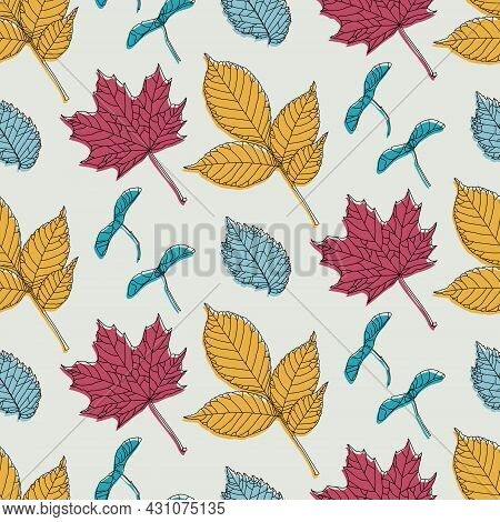 Hand Drawn Seamless Pattern With Various Types Of Leaves: Maple, Ash, Elm And Maple Seeds. Vector Il