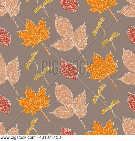 Hand Drawn Seamless Pattern With Various Types Of Leaves: Maple, Ash, Elm And Maple Seeds. White Dra