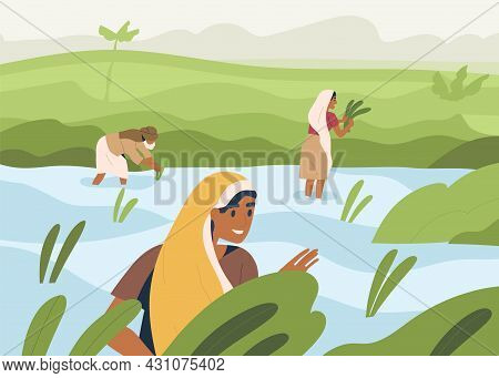Indian Farmers Working On Rice Field, Standing In Water. Farm Workers Work On Farmland In Asia. Happ