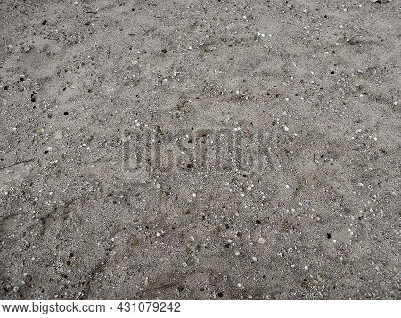 Texture Of The Former Bottom Of The Aral Sea, Now Dried, Containing Sea Stones And Sea Shells. Pictu