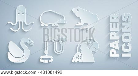 Set Collar With Name Tag, Frog, Swan Bird, Macaw Parrot, Hedgehog And Octopus Icon. Vector