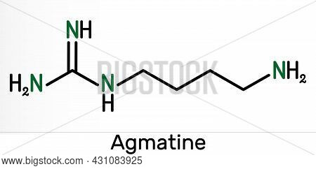 Agmatine Molecule. It Is Amino Compound, Member Of Guanidines, Natural Metabolite Of Arginine. Skele