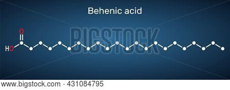 Behenic Acid, Molecule. It Is Docosanoic Acid, Straight-chain, Long-chain Saturated Fatty Acid Skele