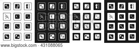 Set Square Measure Foot Size, Human Footprints Shoes, Bird, Goose Paw, Dove, Snake, And Fox Icon. Ve