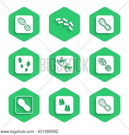 Set Goose Paw Footprint, Camel, Human Footprints Shoes, And Icon. Vector