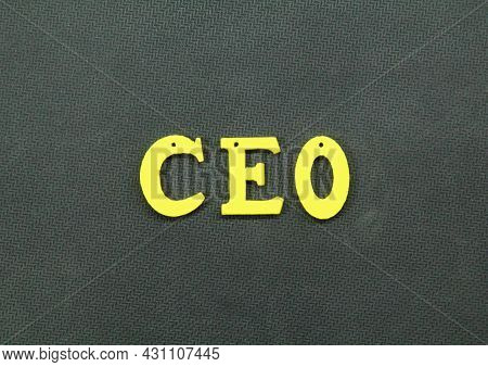 Letter From The Ceo Or Chief Executive Officer