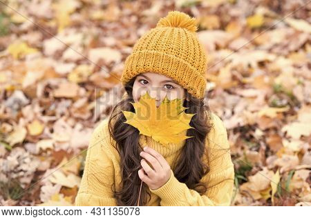 Natural Look. Happy Child Hold Maple Leaf. Autumnal Look Of Small Model. Little Child With Beauty Lo