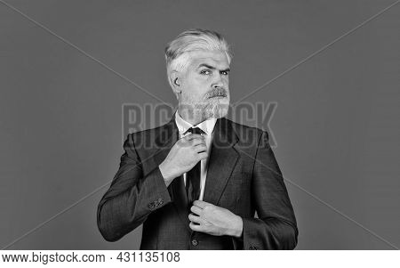 Fixing Tie. Bearded Ceo Grooming. Blond Hipster With Dyed Beard Hair. Professional Business Manager.