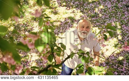 Cheerful Pensioner. Happy Smiling Grandpa Looking Up. United With Nature. Good Mood. Happy Old Age.