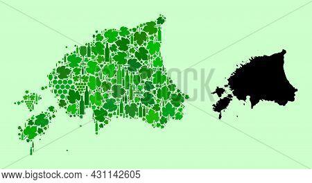 Vector Map Of Estonia. Collage Of Green Grape Leaves, Wine Bottles. Map Of Estonia Collage Composed
