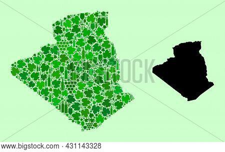 Vector Map Of Algeria. Mosaic Of Green Grape Leaves, Wine Bottles. Map Of Algeria Mosaic Designed Wi