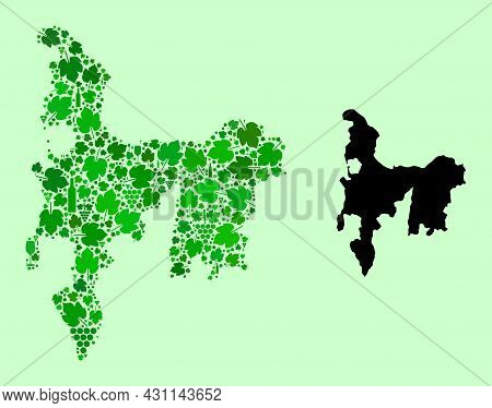 Vector Map Of Hamilton Island. Mosaic Of Green Grapes, Wine Bottles. Map Of Hamilton Island Mosaic C