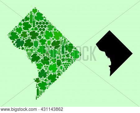 Vector Map Of District Columbia. Collage Of Green Grape Leaves, Wine Bottles. Map Of District Columb