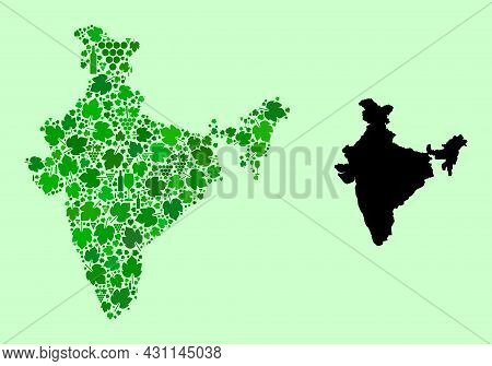 Vector Map Of India. Collage Of Green Grapes, Wine Bottles. Map Of India Collage Designed From Bottl