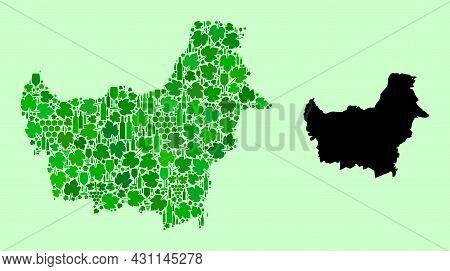 Vector Map Of Borneo Island. Mosaic Of Green Grapes, Wine Bottles. Map Of Borneo Island Mosaic Creat