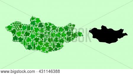 Vector Map Of Mongolia. Mosaic Of Green Grapes, Wine Bottles. Map Of Mongolia Mosaic Designed With B