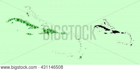 Vector Map Of Caribbean Islands. Collage Of Green Grapes, Wine Bottles. Map Of Caribbean Islands Col