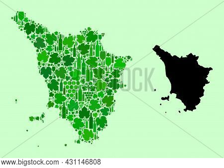 Vector Map Of Tuscany Region. Collage Of Green Grape Leaves, Wine Bottles. Map Of Tuscany Region Col