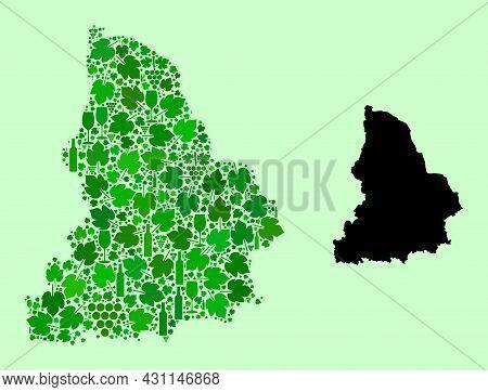 Vector Map Of Sverdlovsk Region. Collage Of Green Grape Leaves, Wine Bottles. Map Of Sverdlovsk Regi