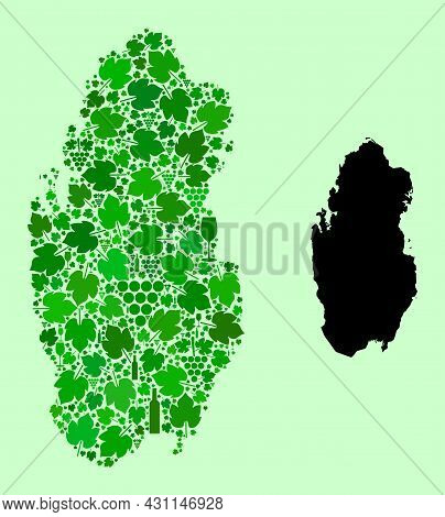 Vector Map Of Qatar. Collage Of Green Grape Leaves, Wine Bottles. Map Of Qatar Collage Created From