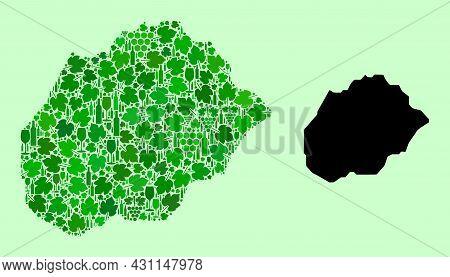 Vector Map Of Alegranza Island. Collage Of Green Grapes, Wine Bottles. Map Of Alegranza Island Colla