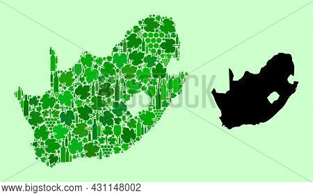 Vector Map Of South African Republic. Collage Of Green Grape Leaves, Wine Bottles. Map Of South Afri