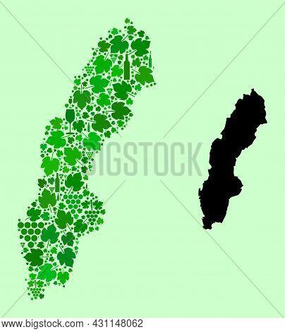 Vector Map Of Sweden. Collage Of Green Grape Leaves, Wine Bottles. Map Of Sweden Collage Designed Wi