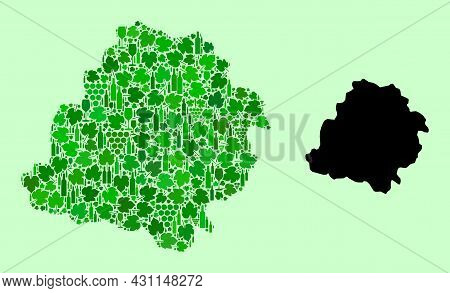 Vector Map Of Lodz Province. Collage Of Green Grape Leaves, Wine Bottles. Map Of Lodz Province Colla