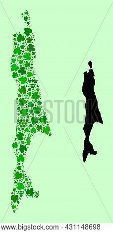 Vector Map Of Sakhalin Island. Mosaic Of Green Grape Leaves, Wine Bottles. Map Of Sakhalin Island Mo